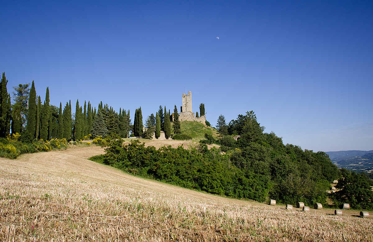 Castello di Romena img